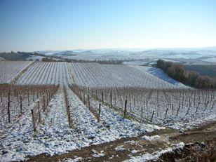 Neve in Italia_e0170101_23235428.jpg
