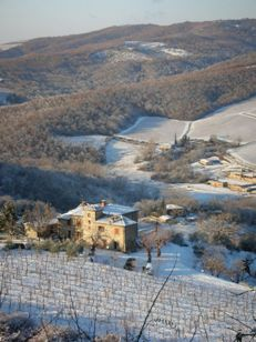 Neve in Italia_e0170101_23242016.jpg