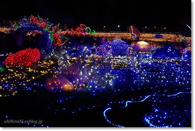 Merry Christmas♪ 海のイルミネーション_f0179404_23165038.jpg