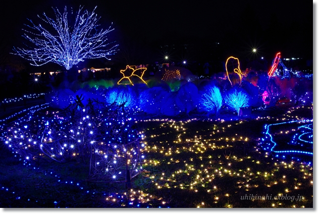 Merry Christmas♪ 海のイルミネーション_f0179404_2319489.jpg