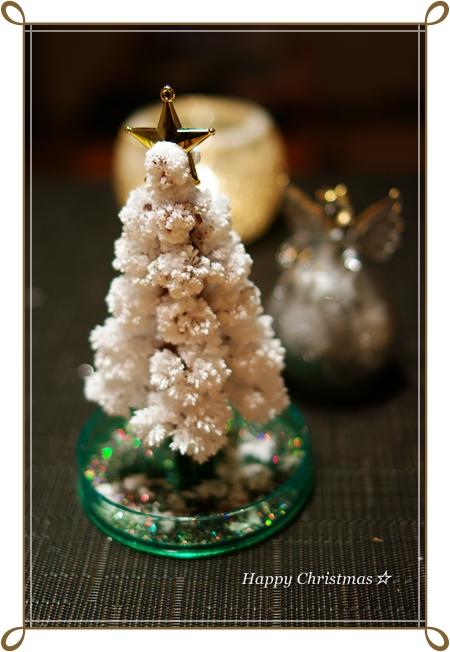 Merry Christmas♪ 海のイルミネーション_f0179404_23435441.jpg