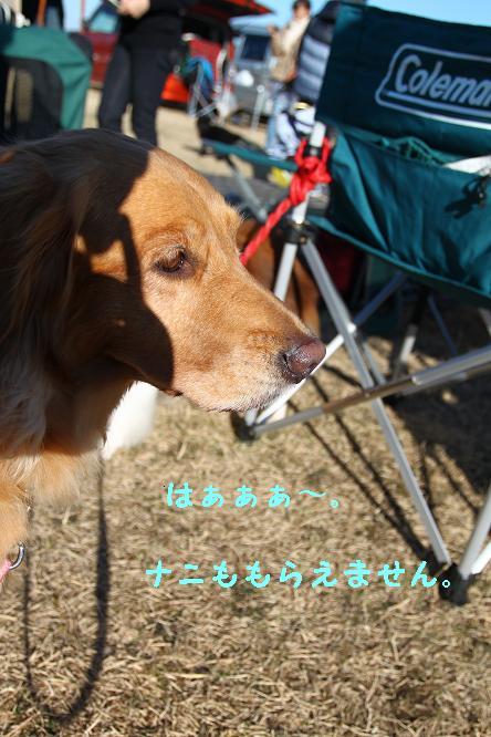 c0159512_20124596.jpg