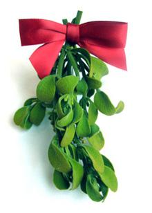 Merry Christmas!_e0103024_11412475.jpg
