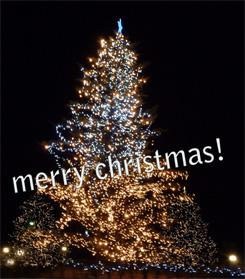 クリスマス・イブですね_e0180332_1443990.jpg