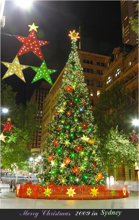 Merry Christmas 2009 _f0084337_1595139.jpg