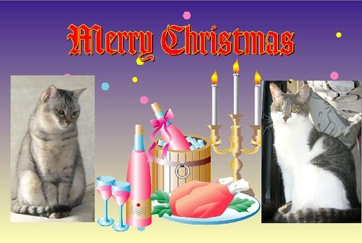 メリークリスマス(続きあり)_f0002743_0472051.jpg