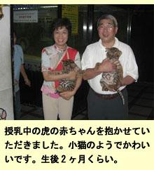 タイで不妊指導、ワニ・トラ園見学記_a0148348_4281723.jpg