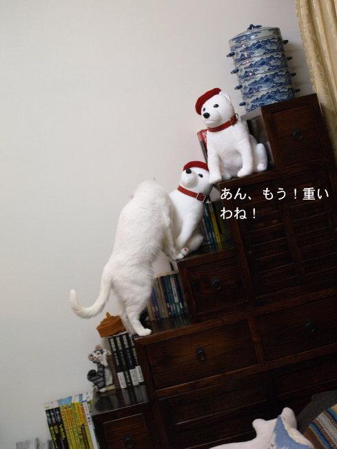 b0058956_0265059.jpg