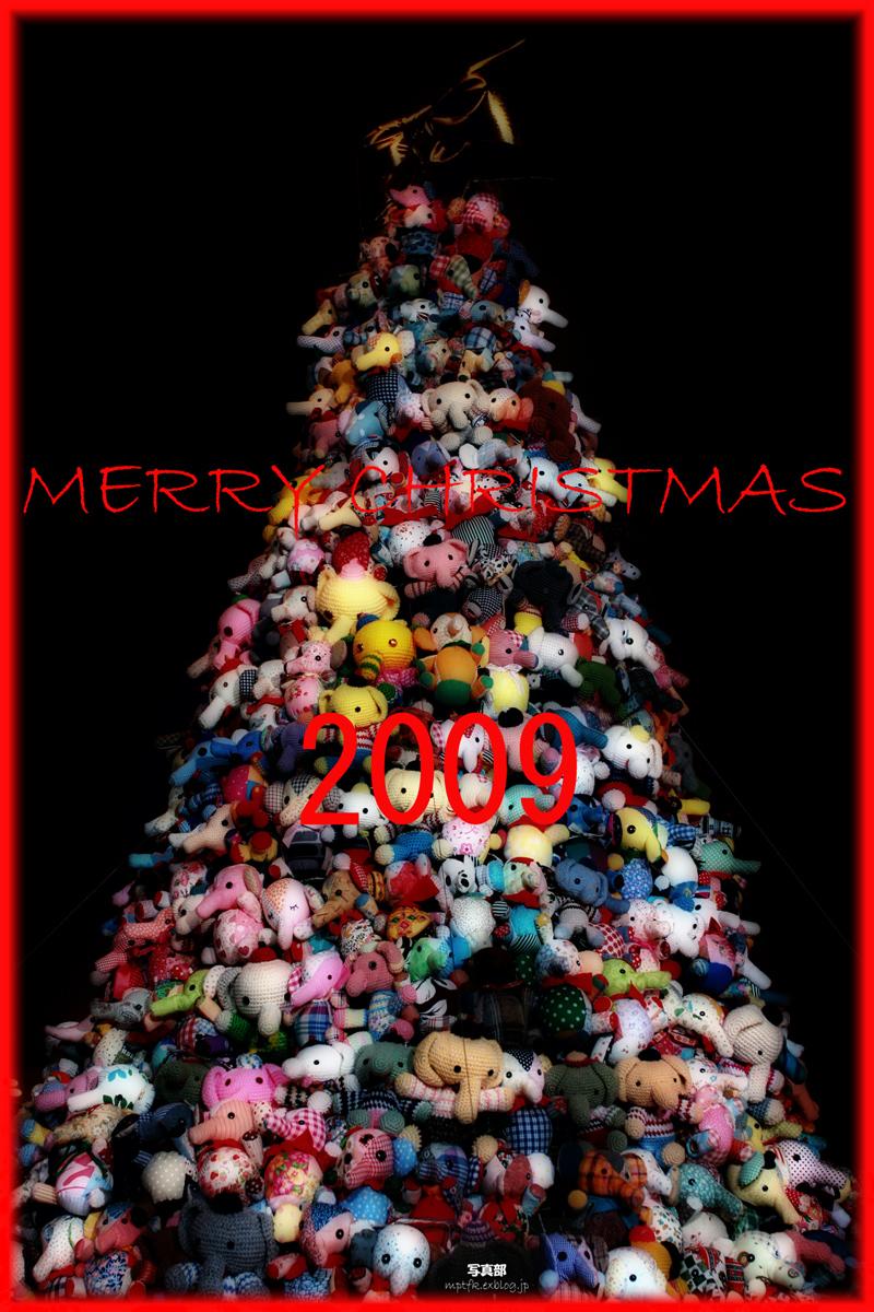 Happy holidays! _f0021869_15431.jpg