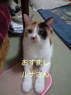 b0112380_2227713.jpg