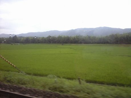 四国の鉄道 6_b0005281_0293835.jpg