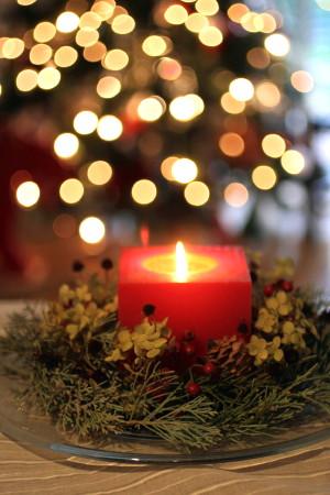 ★Merry Christmas★_e0154682_2156215.jpg