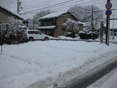 ■雪■_e0188083_1256465.jpg
