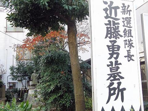 ペーパーホワイト(水仙)_f0030085_22143167.jpg
