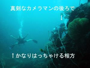 ぴぴっとピピ島!_f0144385_5132588.jpg