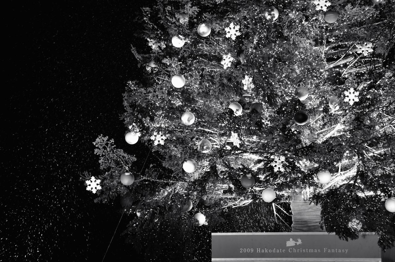 クリスマス ファンタジー_e0171886_012958.jpg
