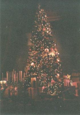 第3弾はベルリンのクリスマス_a0154912_13354250.jpg
