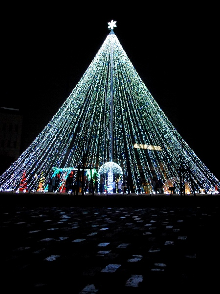 仕事で終わったクリスマスイブ・・・_c0177814_1434710.jpg