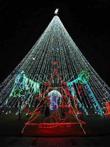 仕事で終わったクリスマスイブ・・・_c0177814_1451284.jpg