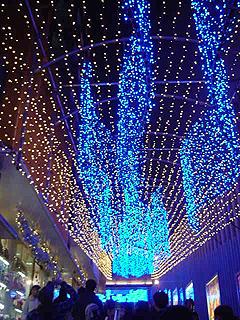 クリスマスディナー_c0025217_18264775.jpg