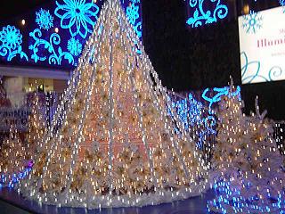 クリスマスディナー_c0025217_18265338.jpg