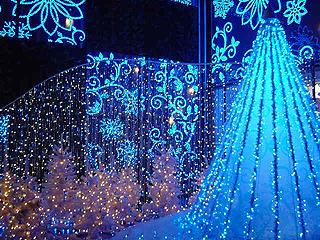 クリスマスディナー_c0025217_18265810.jpg
