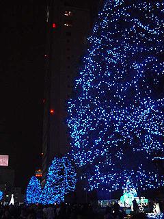 クリスマスディナー_c0025217_18271931.jpg