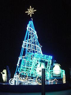 クリスマスディナー_c0025217_18272997.jpg