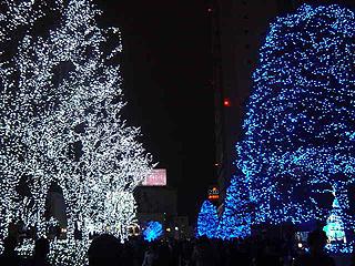 クリスマスディナー_c0025217_1827963.jpg