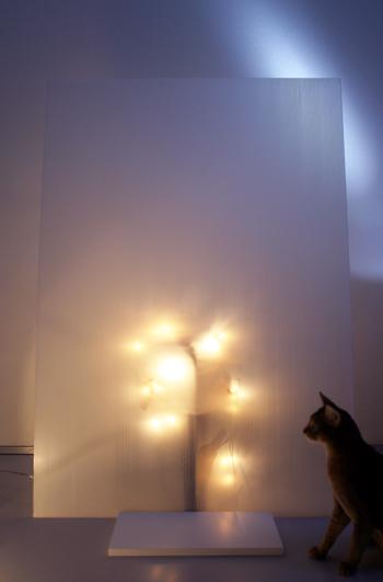 [猫的]Merry christmas_e0090124_7443061.jpg