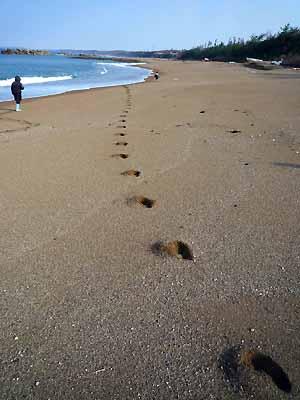 浜地で駆け出し・・・!_c0019338_21475059.jpg