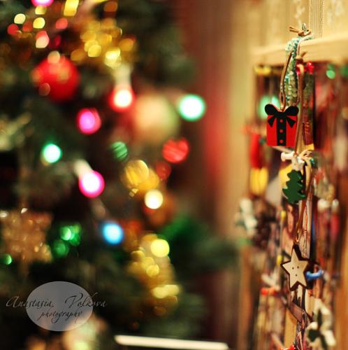メリークリスマス_c0011649_0175022.jpg