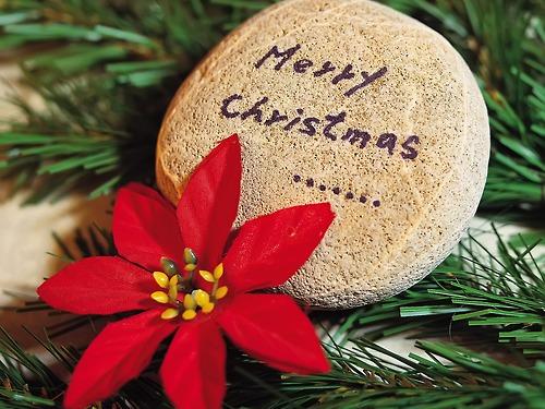 メリークリスマス_c0011649_0214088.jpg