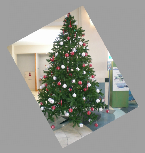 2009年12月25日(金)クリスマスの思い出!_f0060461_10322853.jpg