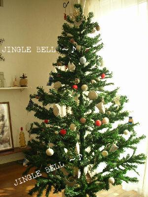 *Merry  Merry  Christmas*_a0122764_1146540.jpg