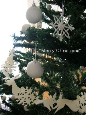 *Merry  Merry  Christmas*_a0122764_11563525.jpg