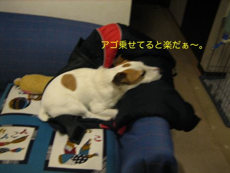 c0179472_20123859.jpg