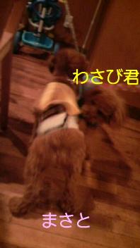 f0175397_22132570.jpg