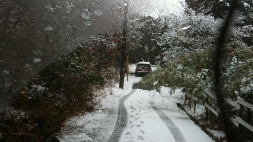 snowing here!_b0060102_9582843.jpg