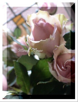 薔薇色の季節_f0149716_13102670.jpg