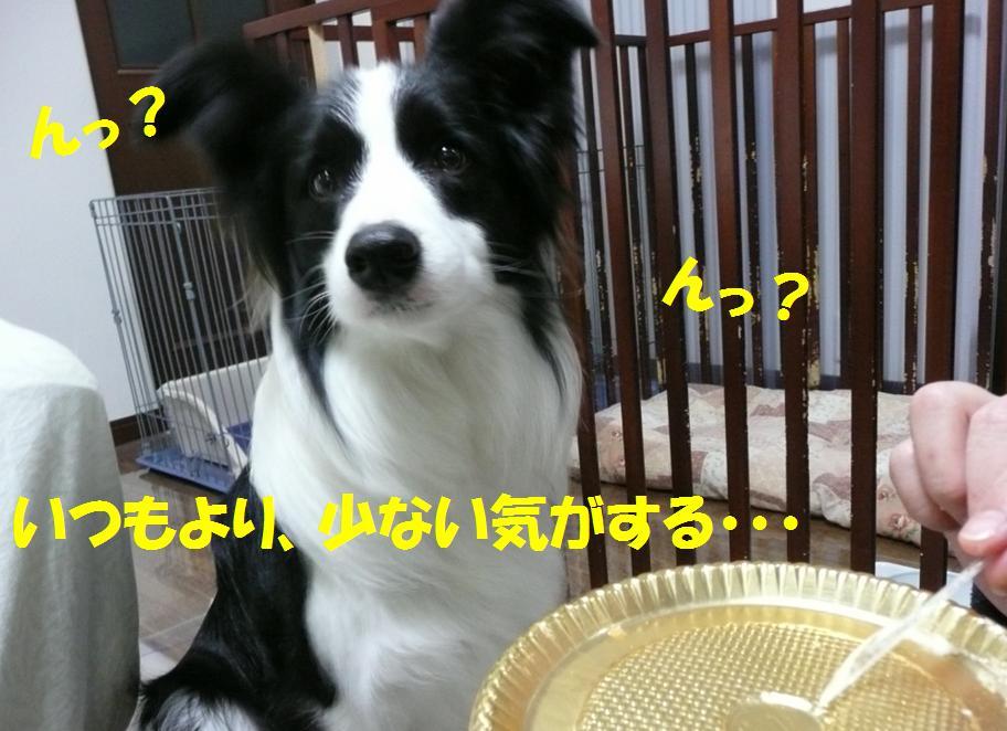 c0147241_14122161.jpg