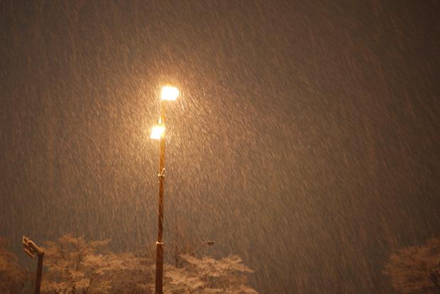a December Night _e0174281_23394884.jpg