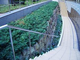外濠の石垣 (虎ノ門③ 三十六見附)_c0187004_1952759.jpg