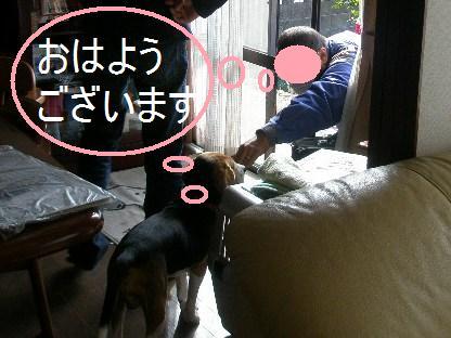 c0205806_1881026.jpg