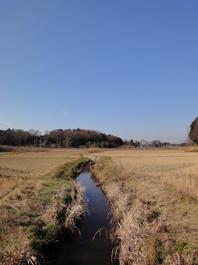 「草深の家」の近くに小川を見つけました。_c0195909_11501715.jpg