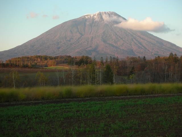 2009年秋、羊蹄山、北海道大学構内_c0219616_16164099.jpg