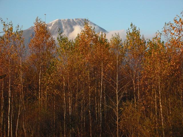 2009年秋、羊蹄山、北海道大学構内_c0219616_1617821.jpg