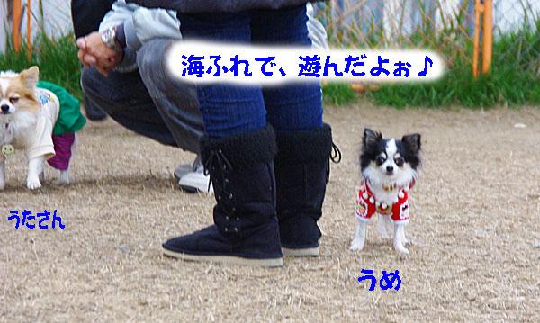 f0186840_8424192.jpg