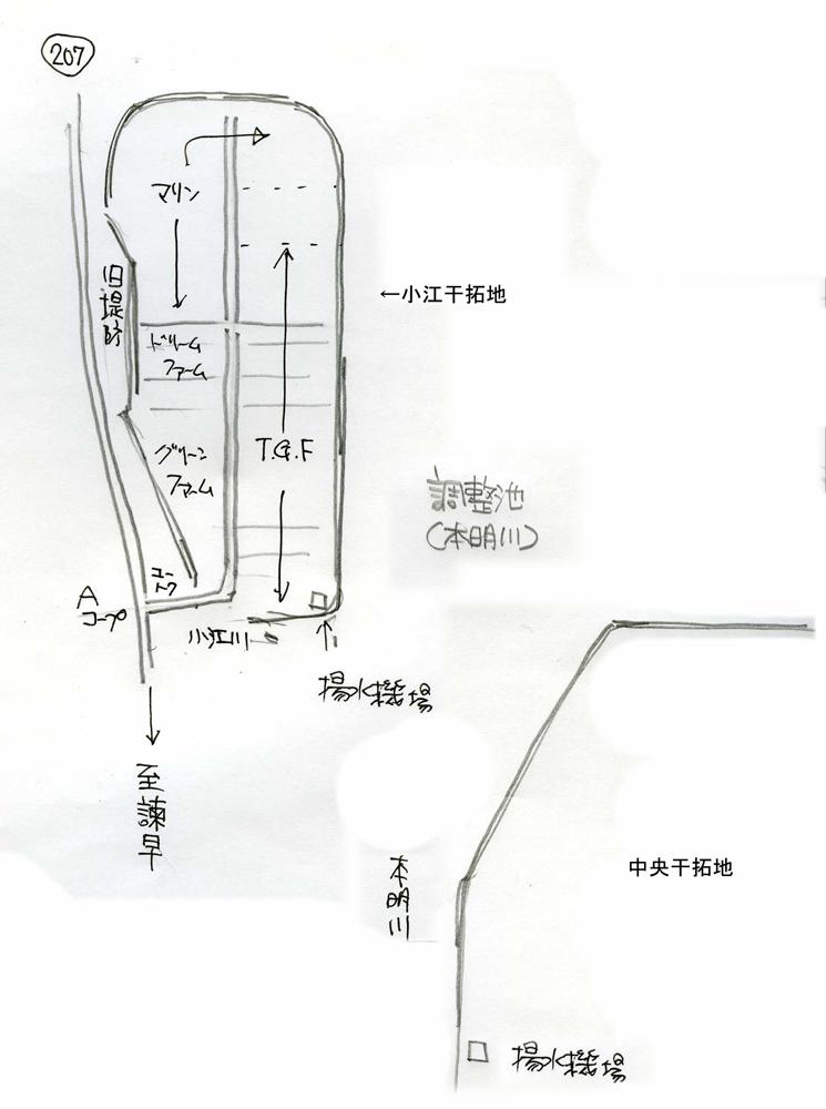 小江干拓地は草ぼーぼー_c0052876_10392379.jpg