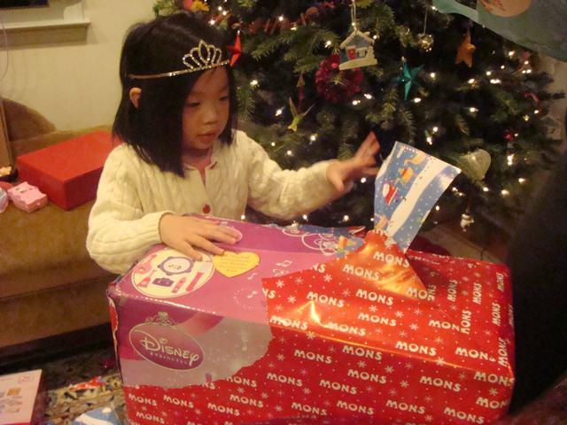 クリスマスのプレゼント欲しいものすべて入手!_d0100880_24565.jpg